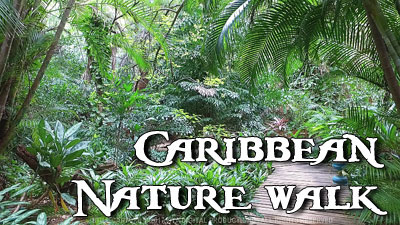 CARIBBEAN NATURE WALK
